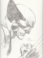 After Wolverine by David Finch, Comic Art
